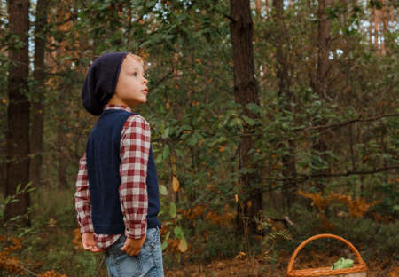 A boy in stylish clothes walks in the woods. Child in the autumn forest. A boy in a checkered shirt and hat. A boy in stylish clothes walks in the woods. Child in the autumn forest. A boy in a checkered shirt and hat. The trip to the forest. Stok Fotoğraf