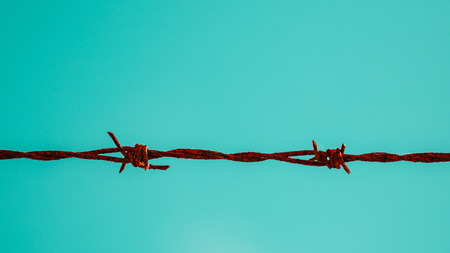 barbed wire fence: Barbed Wire Prison Crime Freedom Concept