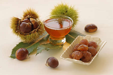 natural chestnut, chestnut and honey Zdjęcie Seryjne