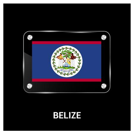 Belize flag design vector