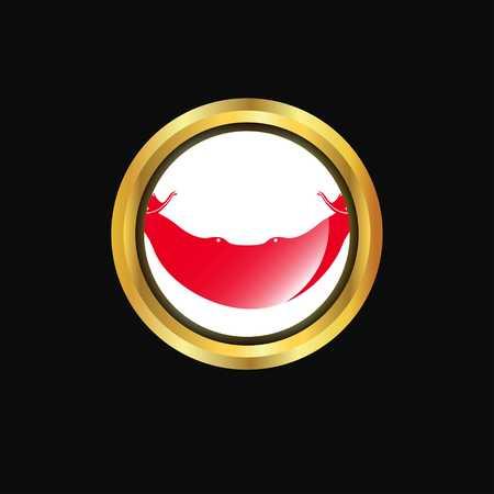 Ecuador flag Golden button
