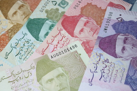 Pakistani currency mix note bundle