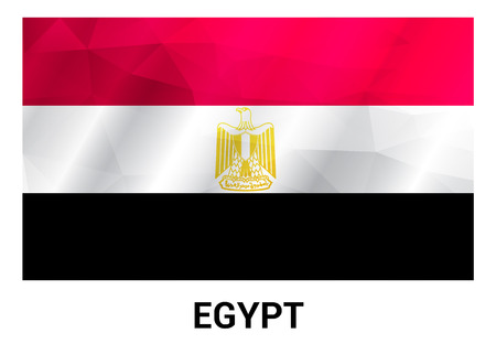Egypt flag design vector