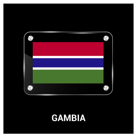 Gambia flag design vector