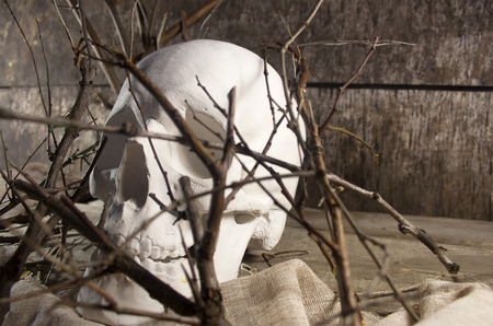 mouth cloth: Skull and branches. White human skull laying on a piece of cloth and wooden old table with branches.
