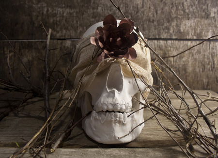 mouth cloth: Skull and flower branches. White human skull with cloth and branches laying on dirty old wooden table front view.