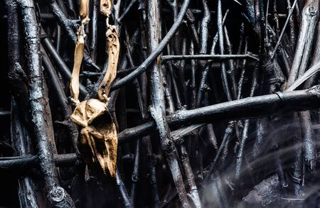Photo of a wooden bird skull amulet handing on  fence made of branches with fog.