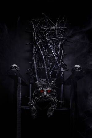 Photo of evil cat with glowing eyes on witch throne made of branches and skulls on foggy black background.