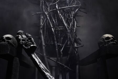 Close-up photo of  evil witch throne made of branches with skulls and cane, on foggy black background. Stockfoto