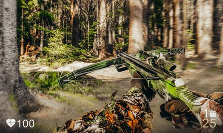 First person view of a soldier war game with crossbow in forest with health and ammo indicator. Stockfoto
