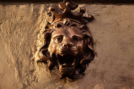 Photo of a metal lion head bas-relief on concrete wall front view.