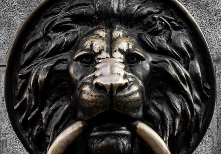 Photo of a metal lion head bas-refief closeup view. Stockfoto