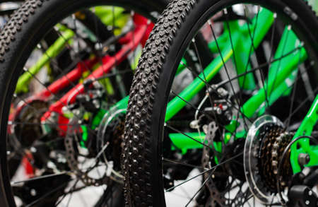 Photo of bikes standing in store close-up wheels view. Stockfoto