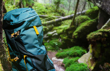 Photo of large hiking and camping blue backpack laying in summer green woods.