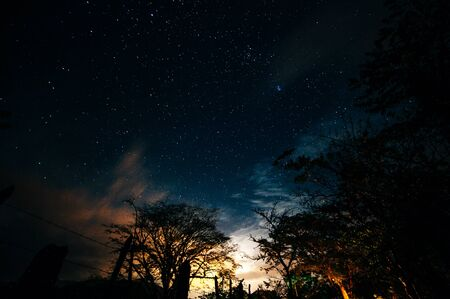 under the tree night time sky star background in Nicaragua