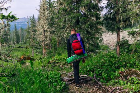 Man go hiking with backpacks on a forest road Stok Fotoğraf