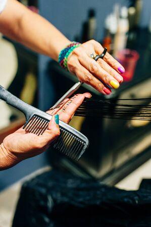 Hairdresser trimming hair with scissors Banco de Imagens