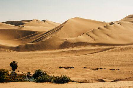 Landscape of Huacachina desert. in Ica, Peru