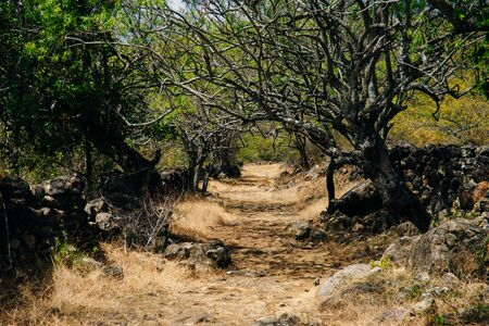 Hiking track Camino Real from Barichara to Guane in Colombia