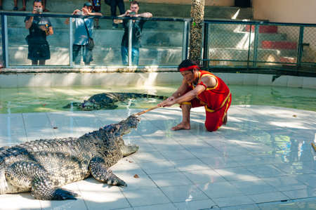 Thailand, July 2019 Crocodile show at crocodile farm in Samutprakarn, Thailand. This exciting show is very famous among tourist. 에디토리얼