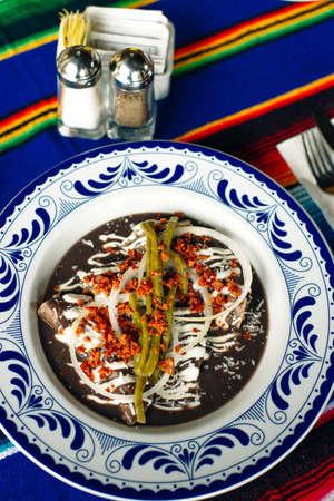 Mole Mexicano, Poblano mole ingredients, mexican spicy food traditional in Mexico.