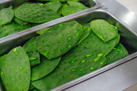 green cactus in the supermarket. Archivio Fotografico