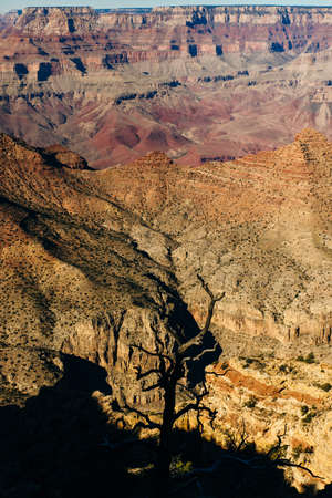 View over the Grand Canyon from the south rim, USA Banco de Imagens