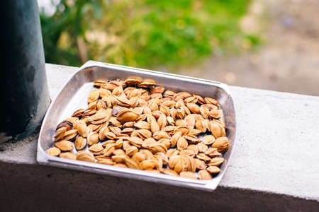 apricot kernels and apricot drying in the sun in trays, apricot drying on the balcony.