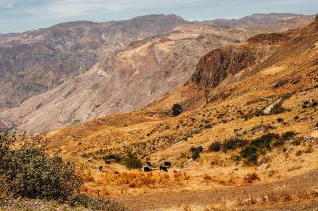 Picturesque mountains in Peru. Highlands of Peru, valley Kolka