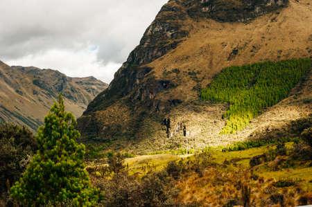 Mystical rock formations of Cumbemayo in Cajamarca PERU.