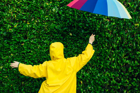 girl in a yellow raincoat on a background of a wall with grass with a multi-colored umbrella