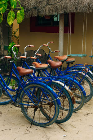 A rental bicycles stand in a row on a parking in hotel