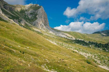 Mountains of Republic of Adygea, Russia. Caucasian mountains. Mountain Lake. Lagonaki. Reklamní fotografie
