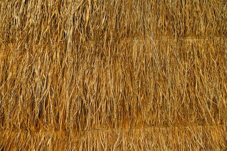 Dry palm leaves roof Banco de Imagens - 152975614