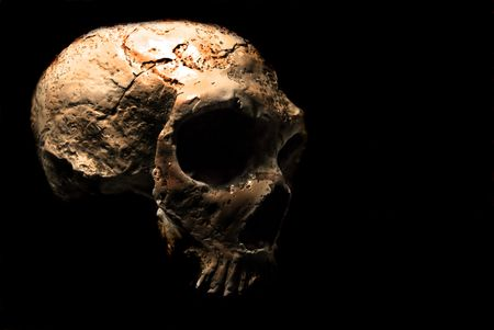 appalling: Scary skull in a black background