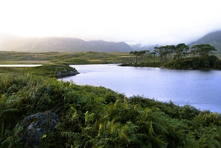 connemara: Landscape of a lake in Connemara Ireland