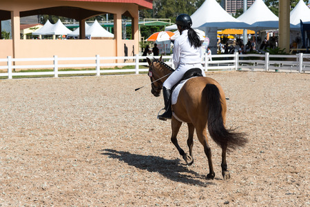 breech: Woman Riding a Horse. Isolated. Equestrian Sport
