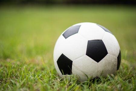 soccer football on green grass
