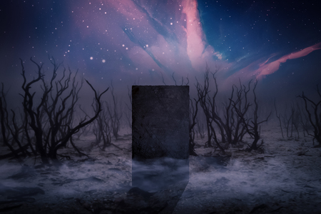 Ancient Places Backgrounds - Monolith Stone in Dead Forest 版權商用圖片