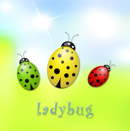 ladybug Illusztráció