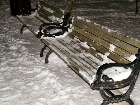 a couple of barren park benches in a local park