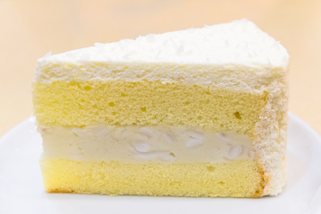 Nouveau morceau de gâteau à la crème de noix de coco sur une plaque blanche Banque d'images - 36574287
