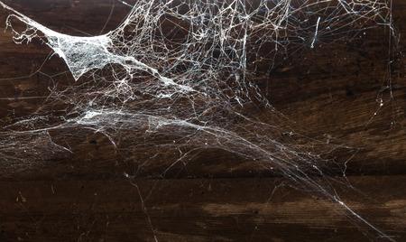 spiderweb: Abstract Spiderweb on wood background