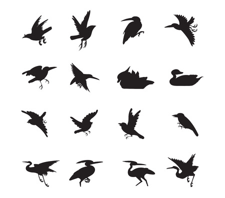 duck silhouette: bird and duck Siluate style black color vector