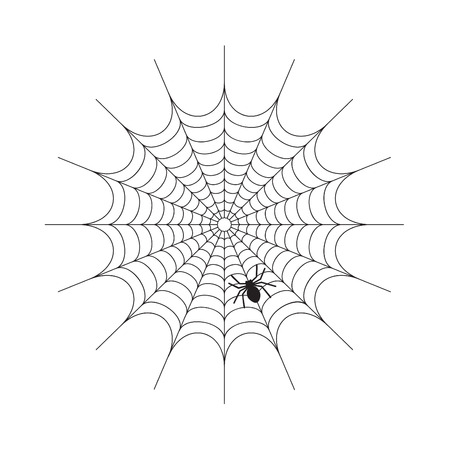 abandon: Abstract Spiderweb on white  vector