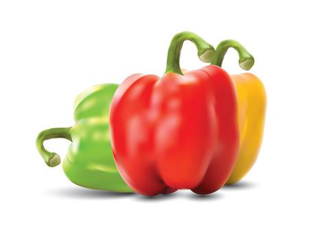paprika: paprika Illustration