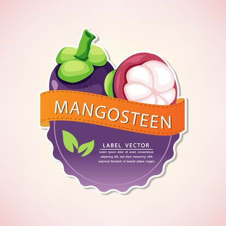 The mangosteen fruit label, fruit native to Thailand, vector illustration