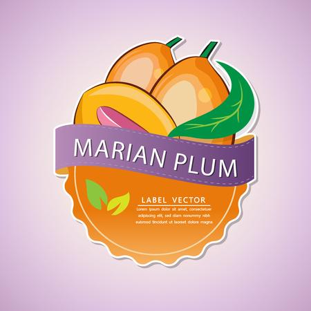 Marian plum fruit label, fruit native to Thailand, vector illustration Çizim