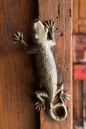 doorknocker: Lizard door knob