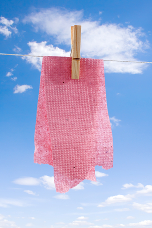 sordid: Recovered and washed toilet paper drying: metaphoric view of stingy behavior